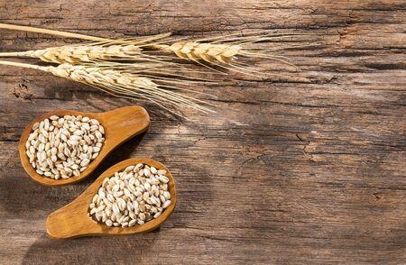 Pearl barley in two wooden spoons - Hordeum vulgare