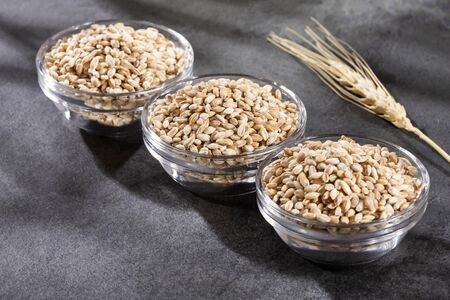 Pearl barley in three glass bowls - Hordeum vulgare
