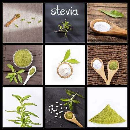 Creative collage of stevia plant natural sweetener images