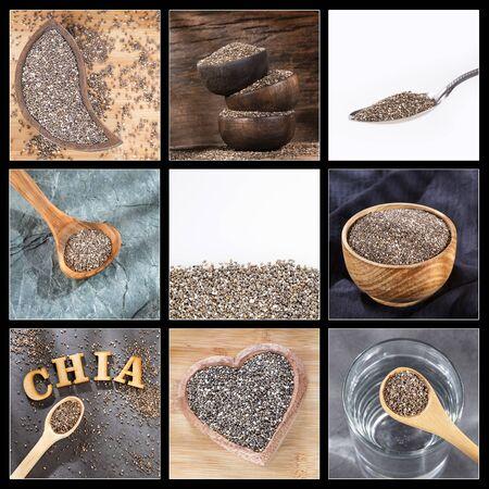 Salvia hispanica - Creative collage of chia seeds images