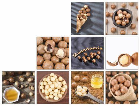 Creative collage of macadamia nuts images - Macadamia integrifolia
