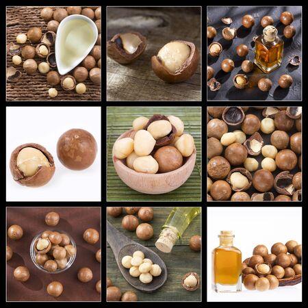 Macadamia integrifolia - Creative collage of macadamia nuts images Zdjęcie Seryjne