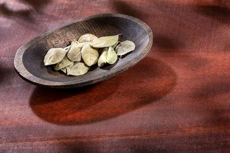 Dried and healing boldo leaves - Peumus boldus