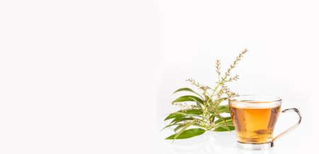Aloysia citrodora - Citron plant tea