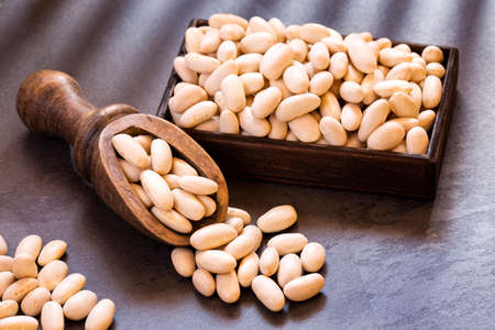 White beans in wooden spoon - Phaseolus vulgaris