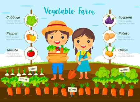 Vegetable garden farm, farmers Harvest on farm, cartoon characters vector design, info graphic