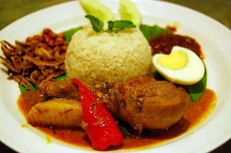 Coconut Rice with Curry Chicken photo