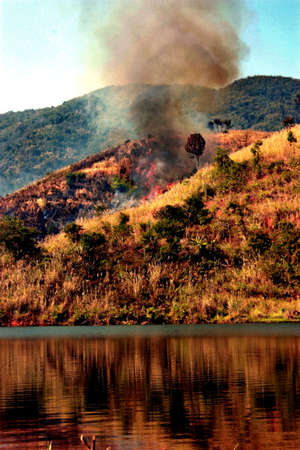 cfc: wildfire in the northermost of Thailand Stock Photo