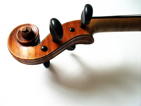 violin scroll, the scroll of a fine antique violin with sharod on white  by W  E  Hill and sons, the top UK violin maker