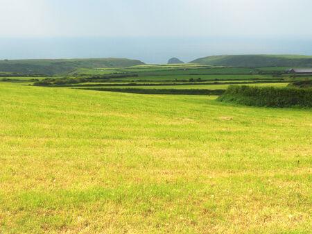 cornish: Cornish fields 3, fields in Cornwall, UK