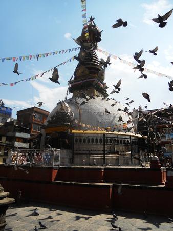 palomas volando: Templo de Nepal, las palomas que vuelan sobre parte fo un templo en Katmandú