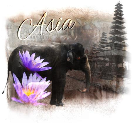 象とハスの花、「アジア」という言葉と、「アジア」のコラージュ 写真素材