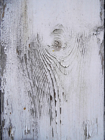 Flaking white paint on the surface of a rough wood plank with grain and knots. Stock Photo