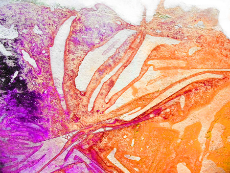 Closeup of organic painted texture with fascinating organic forms and textures from pigment drying under wrinkled plastic on paper, orange and magenta. Stock Photo