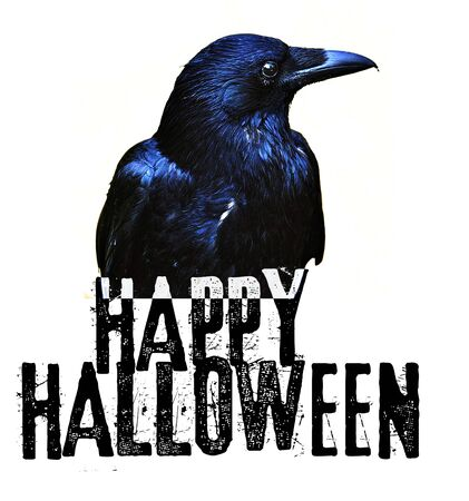 Happy Halloween card with crow and contemporary font wording saying Happy Halloween.