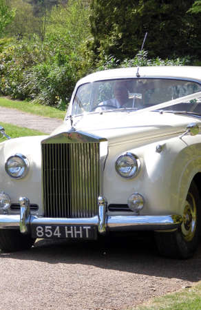 An old white Rolls Royce motorcar in use for a wedding. Editorial