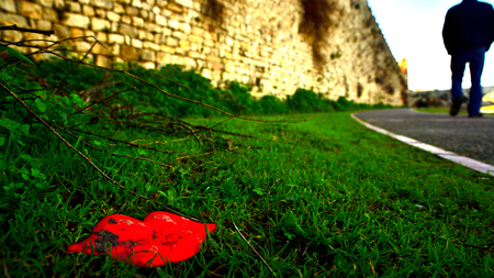lonelyness: Red Kiss in green with a man in the background