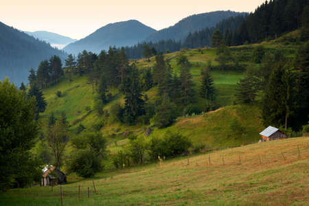 Summer morning scenery from the Rhodope mountain, Bulgaria Stock Photo - 6945468