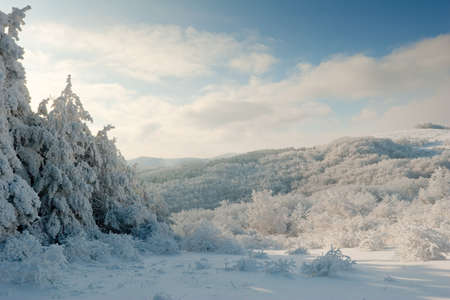 Winter landscape from the Bulgarian Balkan mountains