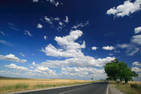 Summer scenery with road and clouds