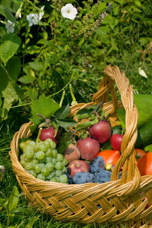 Fresh fruits and vegetables in a basket Stock Photo - 6945506