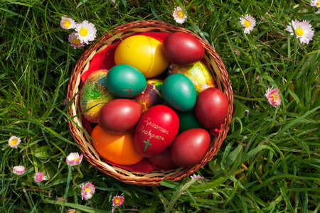 Easter eggs in a container, view from the top, some spring flowers around Stock Photo