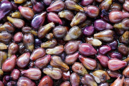 grape seed: Close-up of grapes seeds, medicine ingredient