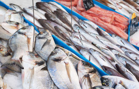 bream: Fresh fish on sea food market stall in Provence, France Stock Photo