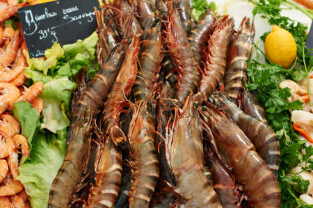 Fresh sea-food, mediterranean royal shrimps for sale on market in French Provence