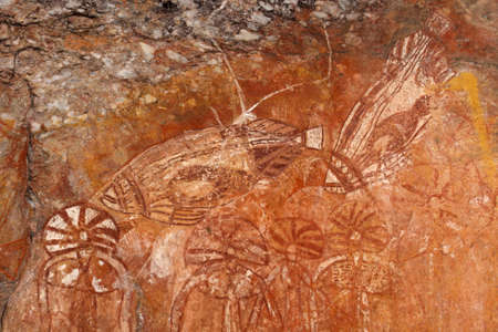 kakadu: Aboriginal rock art depicting fishes, Nourlangie, Kakadu National Park, Northern Territory, Australia