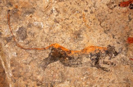 pintura rupestre: Bosquimanos (san) arte rupestre que representa a un depredador (leopardo), Sudáfrica Editorial