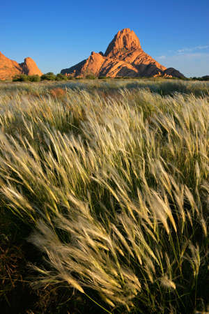 spitzkoppe: Landscape with waving grasses after a good rainy season, Spitzkoppe, Namibia, southern Africa  Stock Photo