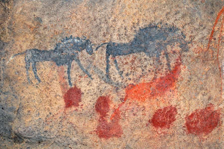 Bushmen (san) rock painting of black wildebeest, South Africa Stock Photo