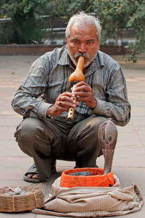 Delhi, India - November 24, 2015:  A cobra being charmed by an Indian man with a flute for the entertainment of tourists in a street of Delhi, India Foto de archivo - 109526793