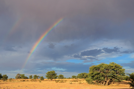 Scenic landscape with a colorful rainbow in a stormy sky, Kalahari desert, South Africa