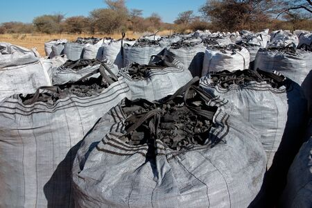 Bags of charcoal produced on a rural farm from encroacher bush, northern Namibia Stock Photo