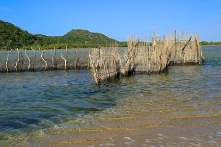Traditional Tsonga fish trap built in the Kosi Bay estuary, Tongaland, South Africa
