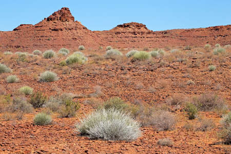 Rugged desert landscape with rocks and desert plants - southern Namibia