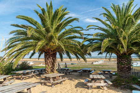 Cap Ferret, Arcachon Bay, France. Terrace on the bay Banque d'images - 114913059
