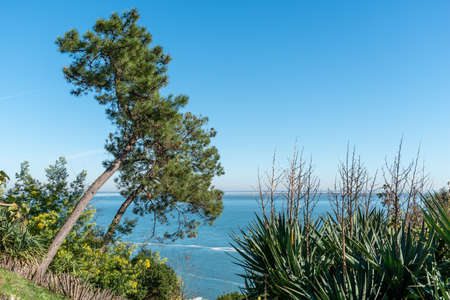 Arcachon Bay, France. View over the bay near Cap Ferret Stock Photo