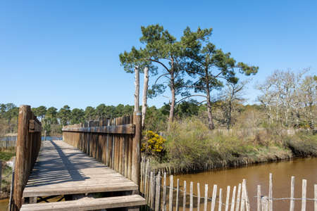 Arcachon Basin (France), small bridge on a hiking trail between Andernos and Ares