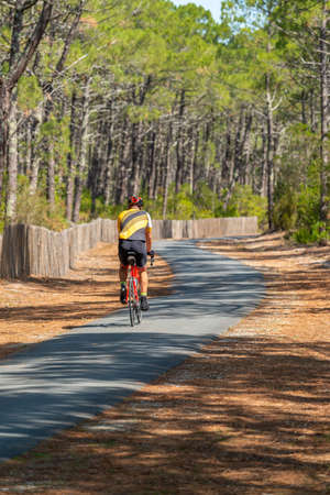 Arcachon Bay, France. Bike path in the Forest of Gascony 스톡 콘텐츠