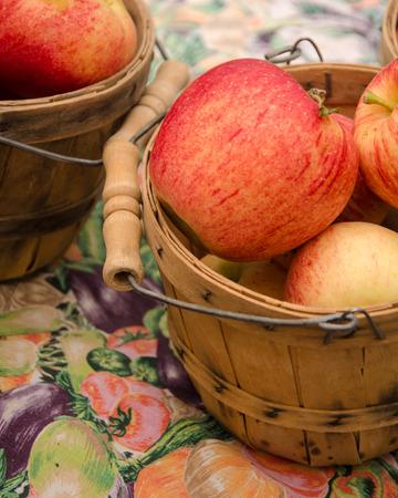 Apples in small framer photo