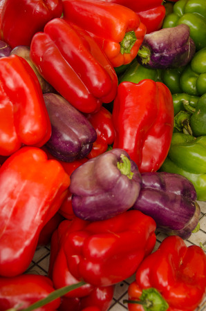 Several red, green, and purple bell peppers at farm stand