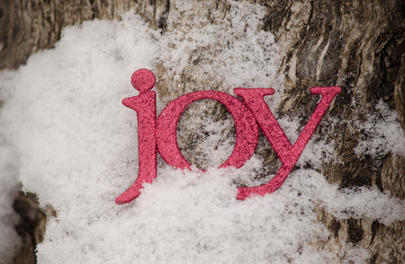 red letters spell joy in snow