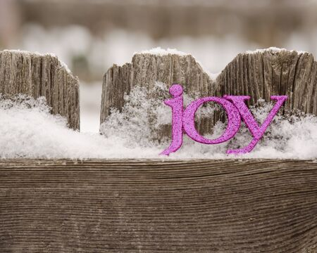 purple letters spll joy against rustic fence