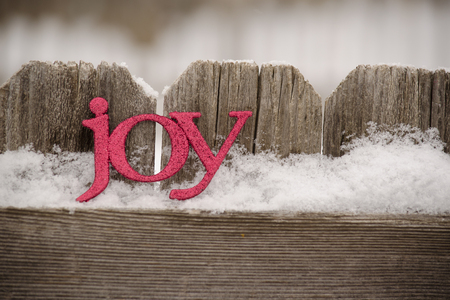 red letters spll joy against rustic fence