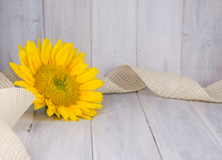 Yellow sunflower with burlap ribbon on white vintage backdrop