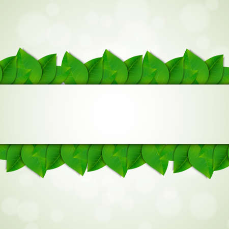 Green leaves background.