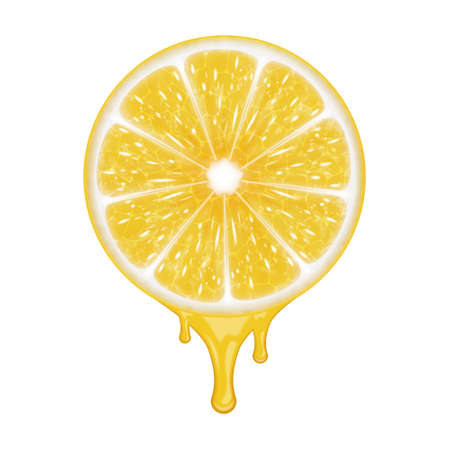 citric: Lemon slice